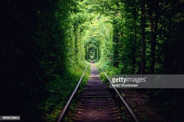 tunnel of love - ウクライナ トンネル ストックフォトと画像