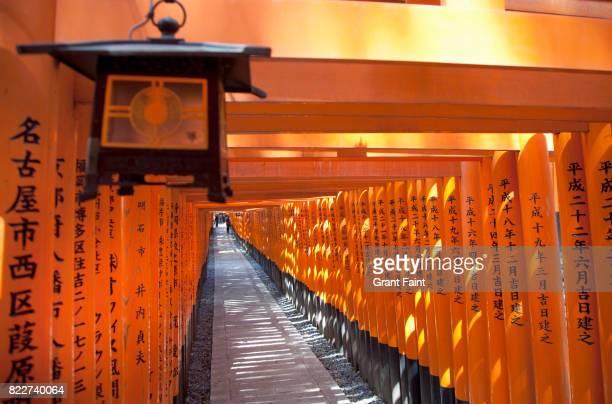 Tunnel of Tori gates.
