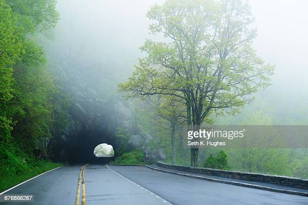 Tunnel on misty empty road, Shenandoah National Park, Virginia, USA