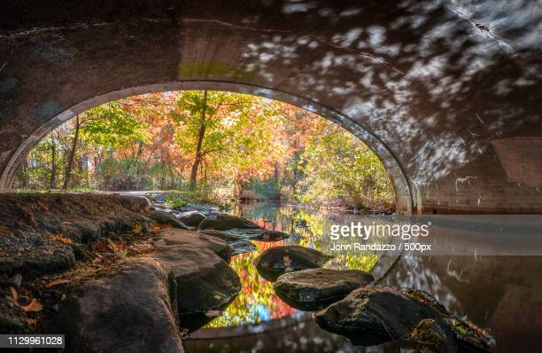 tunnel vision - nikko city stock pictures, royalty-free photos & images