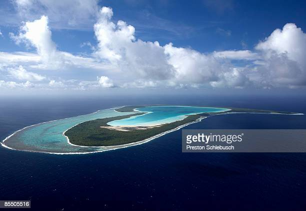 tupai island - schlebusch stock pictures, royalty-free photos & images
