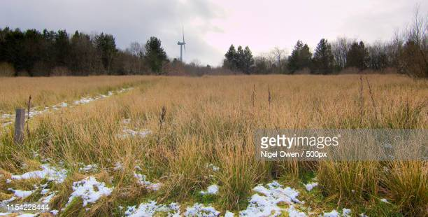turbine - nigel owen stock pictures, royalty-free photos & images