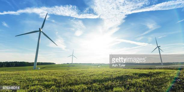 Turbines on wind farm