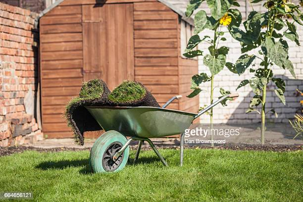 turf rolls in wheelbarrow on garden lawn - turf stock pictures, royalty-free photos & images