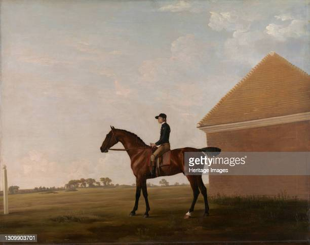 Turf, with Jockey up, at Newmarket;Portrait of 'Turf' with Jockey up, ca. 1766. Artist George Stubbs. .