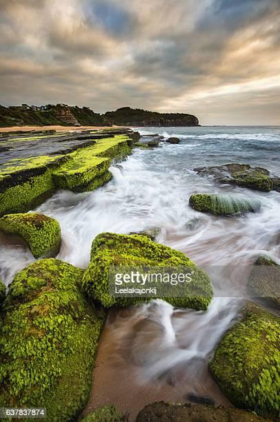 Turimetta beach north beach from Sydney.