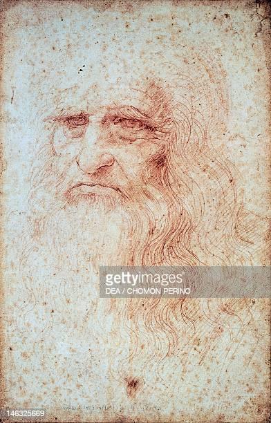 Turin Biblioteca Reale Selfportrait 15121515 by Leonardo da Vinci Red chalk on paper 333x213 cm