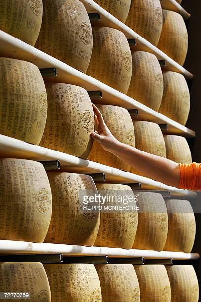 A visitor touches Parmigiano Reggiano at the Salone del Gusto 26 october 2006 in Turin The Slow Food movement kicks off its second world gathering...