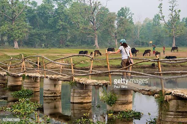 Turist crossing Rapti river in Sauraha village