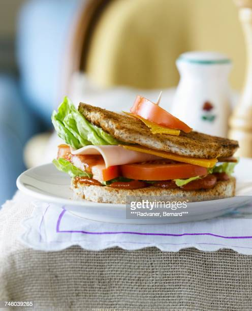 Turkey and mimolette toasted club sandwich
