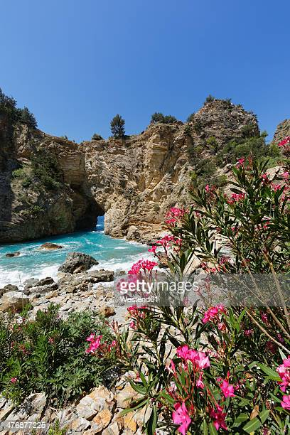 Turkey, Antalya Province, Alanya, Turkish Riviera, Cilicia, Gazipasa, ancient city Antiochia ad Cragum, oleander and rock formation