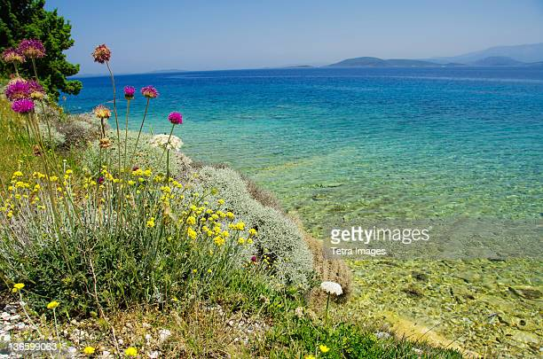 turkey, cesme, izmir, mediterranean coast - izmir stock pictures, royalty-free photos & images