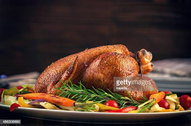 turkey dinner - turkey bird stock photos and pictures