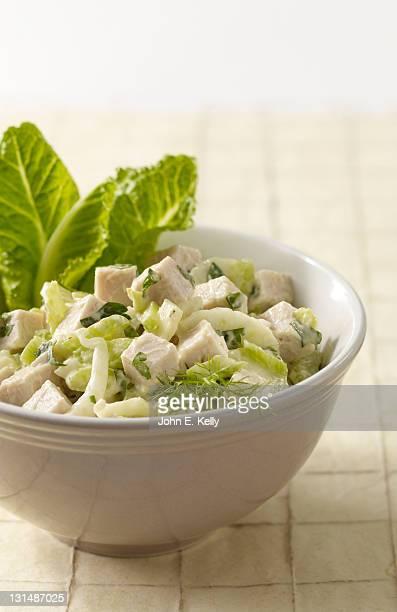 Turkey Fennel Salad