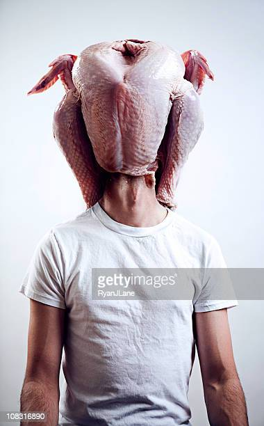 turkey head - funny turkey images stock photos and pictures