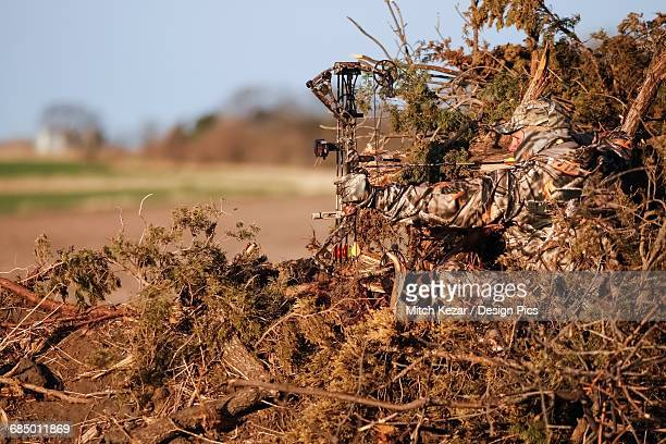 turkey hunter sits in ground blind made from natural materials - turkey hunting stock photos and pictures