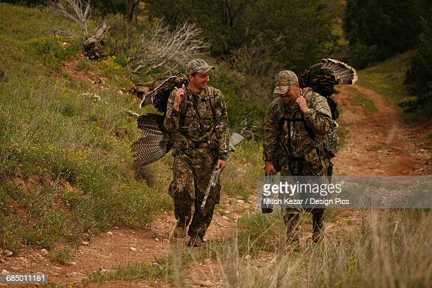 turkey hunters carrying turkeys - turkey hunting stock photos and pictures