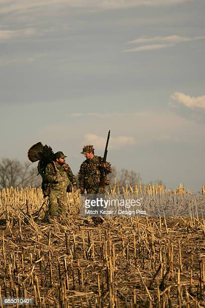 turkey hunters in field - turkey hunting stock photos and pictures