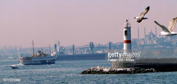 Turkey - Seagull & Lighthouse - Snapshoot
