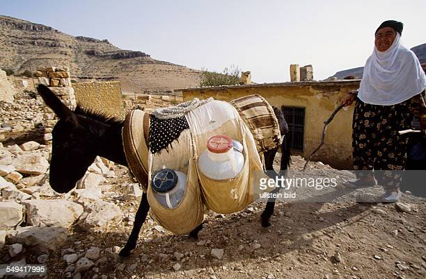 Turkey, Turkey on its way to Europe. Village Caykoey at the turkish-syrian border. The village was destroyed in 1992/1993 by the turkish army....
