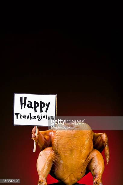Turkey with sign - Happy Thanksgiving