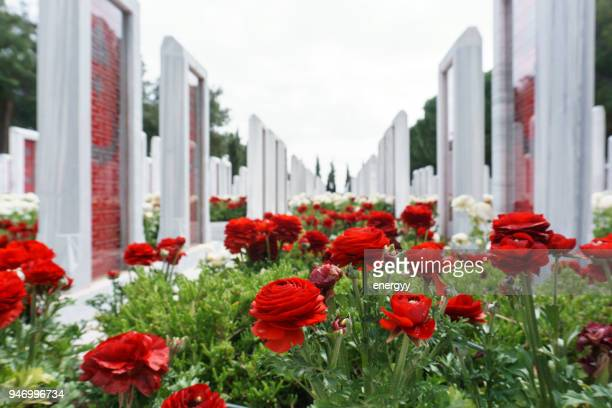 turkish cemetery, battle of gallipoli - anzac soldier stock pictures, royalty-free photos & images