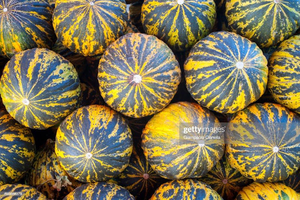 Turkish melon : Stock Photo