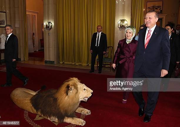 Turkish President Recep Tayyip Erdogan and his wife Emine Erdogan walk pass a stuffed lion before a meeting with President of Ethiopia Mulatu Teshome...