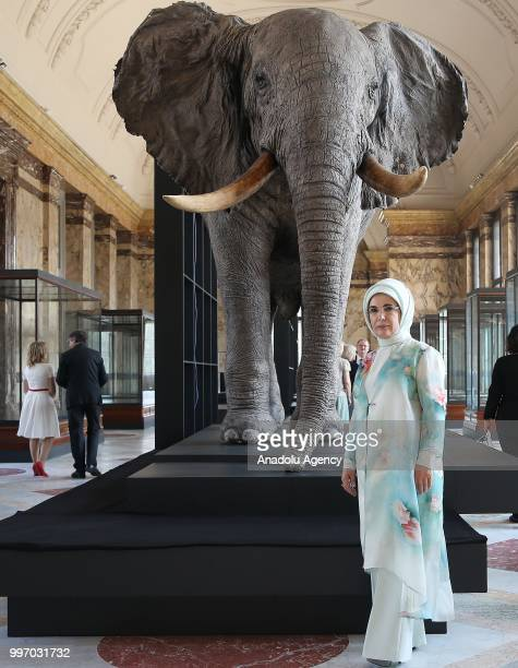 Turkish President Recep Tayyip Erdogan's wife Emine Erdogan poses for a photo as she attends an event at the Museum of Africa with the attendance of...