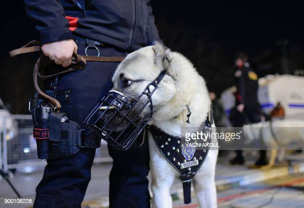 A Turkish security force member patrols with his dog around the city's main Taksim Square as people remember the victims of a deadly New Year's...