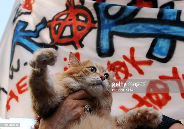 A Turkish woman holds her cat in front of a banner on September 30 2012 during a march for animal rights on Istiklal Avenue in Istanbul Demonsrators...