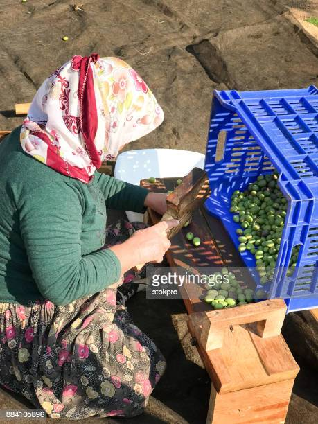turkish woman processing olive - aegean turkey stock pictures, royalty-free photos & images