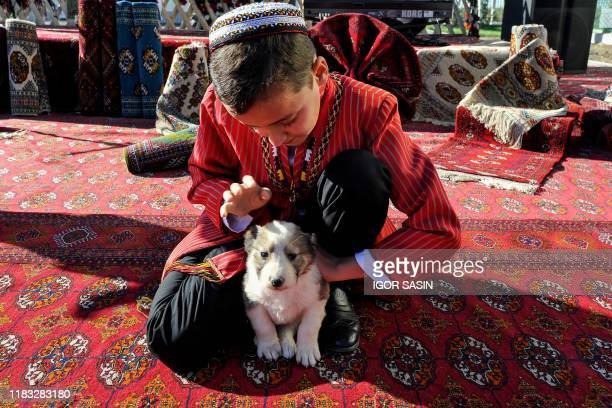 Turkmen boy wearing a traditional dress caresses an alabai shepherd dog puppy at a kennel outside Ashgabat on November 7, 2019. - A gift for foreign...