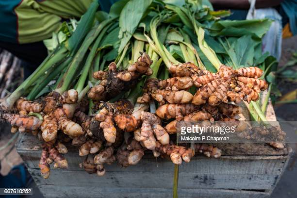 Turmeric (Curcuma) root for sale in a market, Pondicherry, India