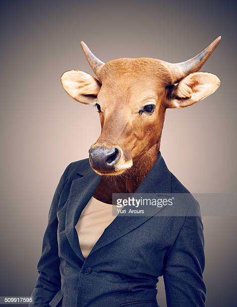 turning your business into a cash cow - dierenkop stockfoto's en -beelden