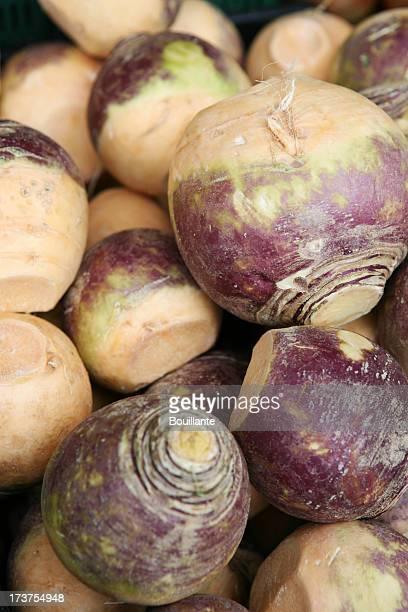 turnip - rutabaga stock pictures, royalty-free photos & images