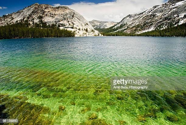 turquoise blue waters of tenaya lake - amit basu stock pictures, royalty-free photos & images
