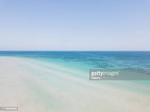 turquoise colored sea and beach with clear blue sky. aerial view or drone view. - holbox island fotografías e imágenes de stock