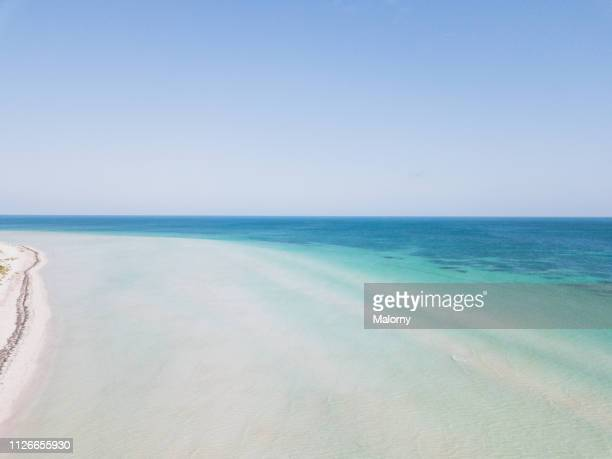turquoise colored sea and beach with clear blue sky. aerial view. - holbox island fotografías e imágenes de stock