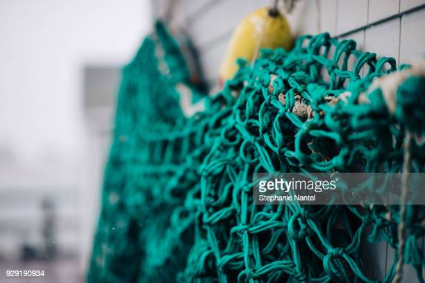 Turquoise Fish net