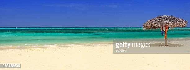 Turquoise sea with empty beach and palm tree