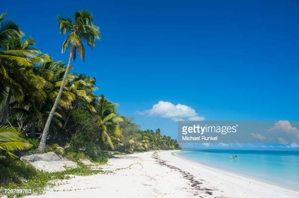 turquoise waters and white sand beach, ouvea, loyalty islands, new caledonia, pacific - new caledonia stock photos and pictures