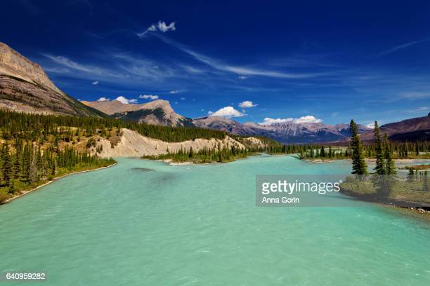 Turquoise waters of Saskatchewan River Crossing along Icefields Parkway in summer, Alberta