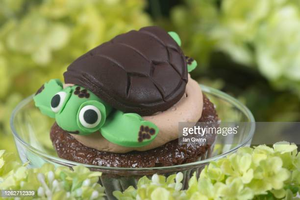 turtle cupcake - ian gwinn stock pictures, royalty-free photos & images