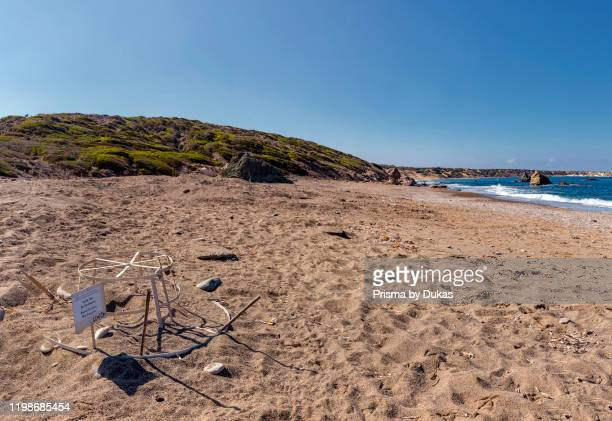 Turtle nest protection on Lara Beach, Akamas Peninsula National Park, Cyprus, Cyprus, 30070201.