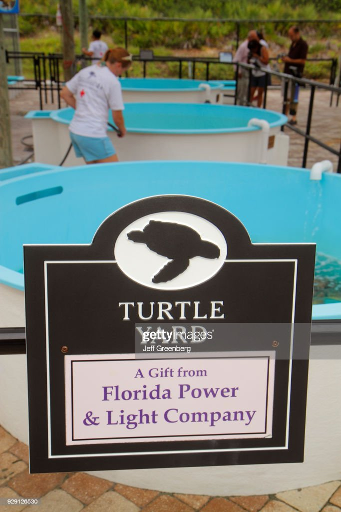 Turtle Yard, Florida Power And Light Company Sign.