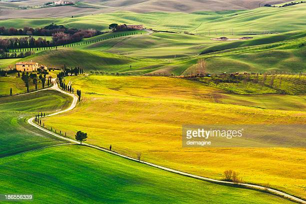 tuscan hills - val d'orcia stock pictures, royalty-free photos & images