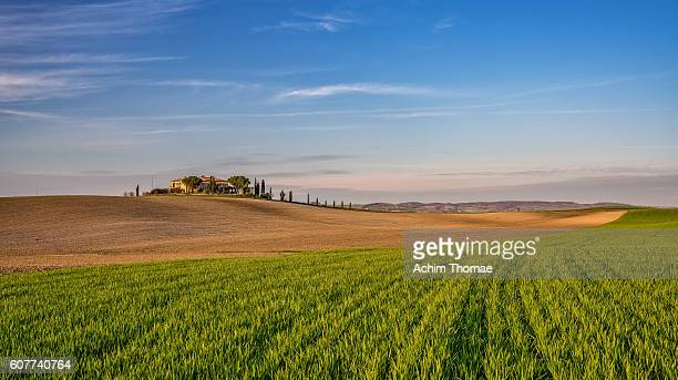 tuscan landscape in spring, val d'orcia, tuscany, italy - achim thomae stock-fotos und bilder