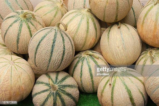 tuscan melon cantalopes at farmers market - muskmelon stock pictures, royalty-free photos & images