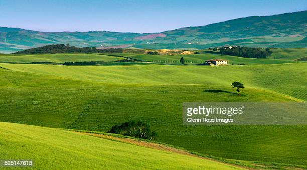 tuscan rolling hills - san quirico d'orcia stock pictures, royalty-free photos & images